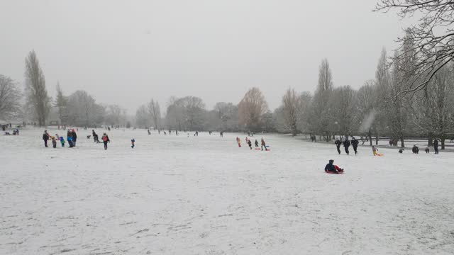person rides a sleigh down a hill in the snowy weather at horniman gardens park and museum on january 24, 2021 in london, united kingdom. parts of... - hill stock videos & royalty-free footage