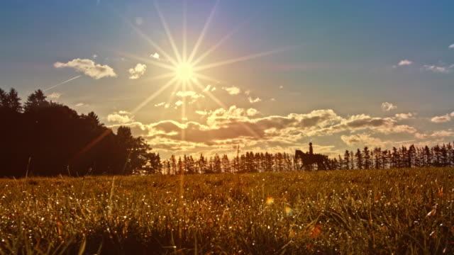 vidéos et rushes de ds personne équitation cheval à travers prairie au soleil - équitation de loisir