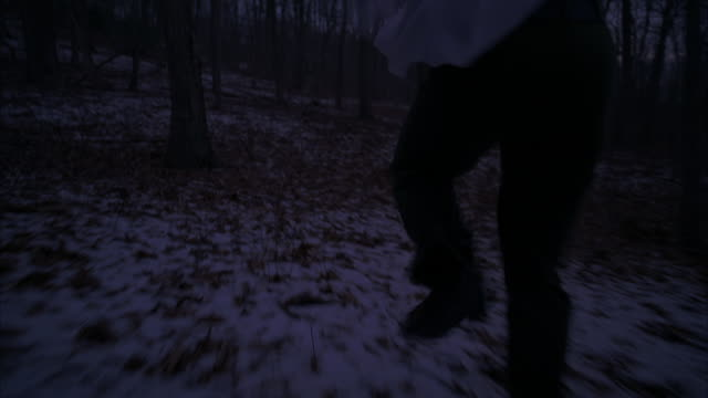 a person running through a forest at night. - woodland stock videos & royalty-free footage