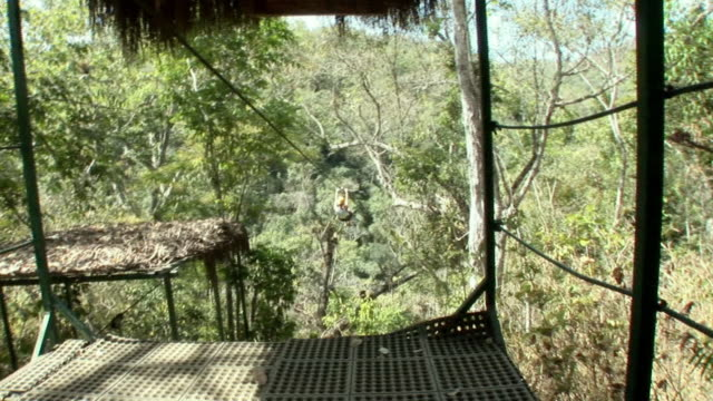 ws, shaky, person sliding down zipline in forest, rear view, mexico - ロープスライダー点の映像素材/bロール