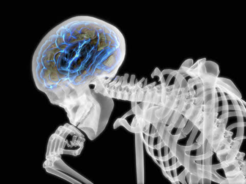 person thinking. pulsating brain - biomedical illustration stock videos & royalty-free footage