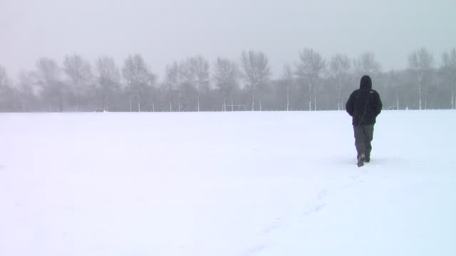 ws person walking away from camera through large field in a snowy victoria park, london - 30 seconds or greater stock videos & royalty-free footage