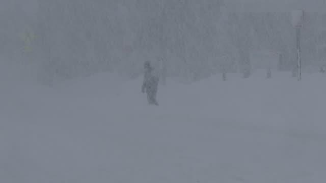 person walking in a blizzard - scott mcpartland stock videos & royalty-free footage