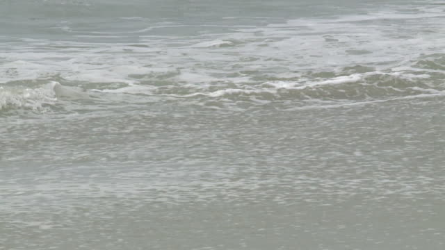 person walking on sandy beach before hurricane florence in myrtle beach south carolina on thursday september 13 2018 - carolina beach stock videos and b-roll footage