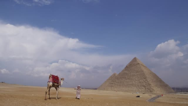 a person walking with a camel to the pyramid in cairo, egypt - north africa stock videos & royalty-free footage