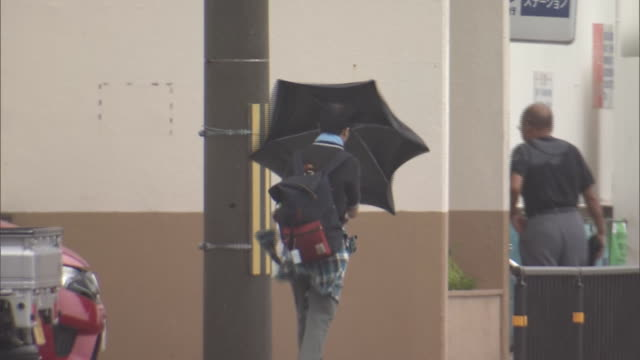 person walking with umbrella in strong wind, wakayama, japan - environmental issues点の映像素材/bロール