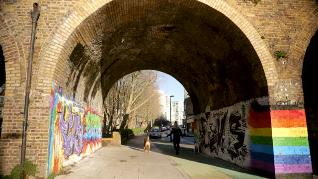 person walks two dogs under railway arch in deptford, london - spectrum stock videos & royalty-free footage