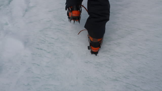 person wearing snow shoes walking on ice, antarctica - south pole stock videos & royalty-free footage