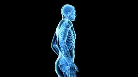 person with backache - anatomy stock videos & royalty-free footage