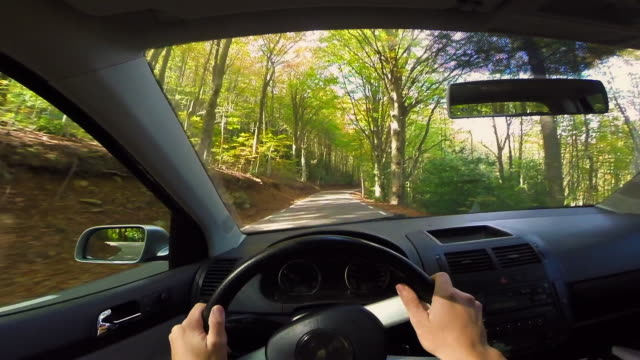 personal perspective from car in the stunning forest with autumn colors in the montseny mountain a beautiful huge land covered with trees and high mountains close to barcelona city. - lenkrad stock-videos und b-roll-filmmaterial