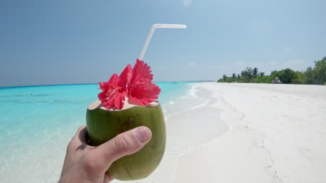 ms personal perspective man with coconut drink on sunny tropical ocean beach,maldives - coconut stock videos & royalty-free footage