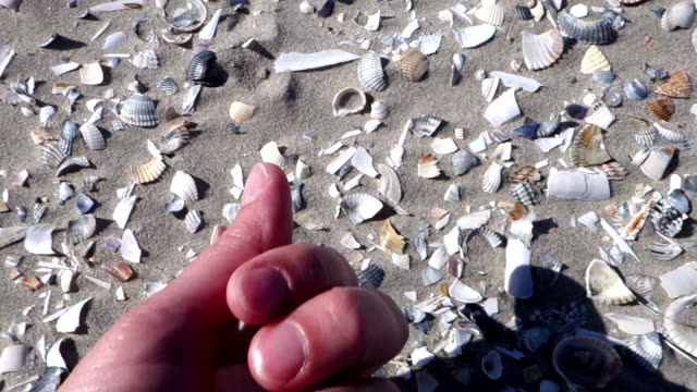 personal perspective of a woman collecting seashells - north sea stock videos & royalty-free footage