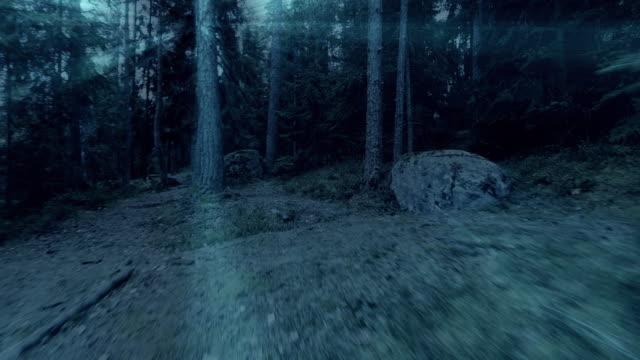 vídeos y material grabado en eventos de stock de perspectiva personal de caminar por un sendero en el bosque. - vampiro