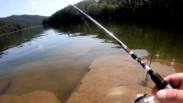 perspective of a person casting a fishing line into a lake - fishing rod stock videos & royalty-free footage