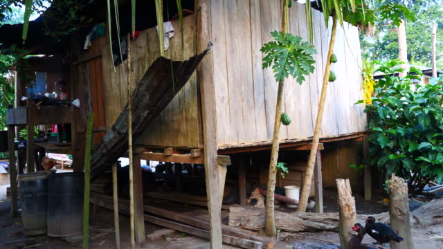 Peru, Amazon basin, Local house in Vista Alegre village, Pacaya Samiria National Reserve