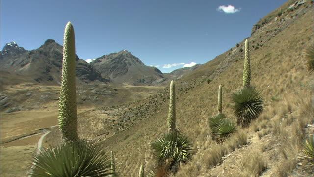 Peru Huascarán National Park