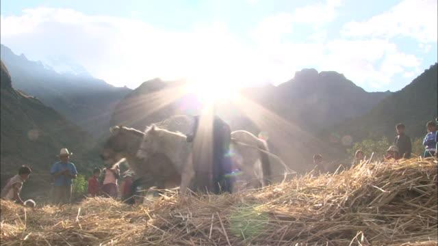 peru huascarán - rope stock videos & royalty-free footage