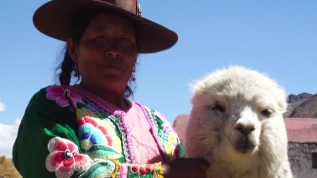 ペルーの女性彼女のかわいいアルパカ - ペルー人点の映像素材/bロール