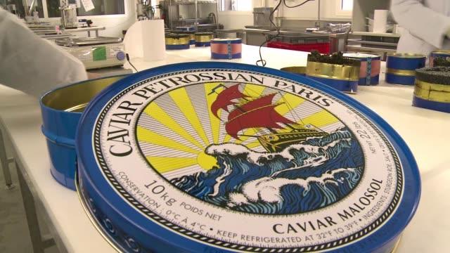 a pesar de la crisis economica la demanda de caviar en el mundo va en aumento voiced lata gigante de caviar a 100000 euros on january 18 2014 in... - fordern stock-videos und b-roll-filmmaterial