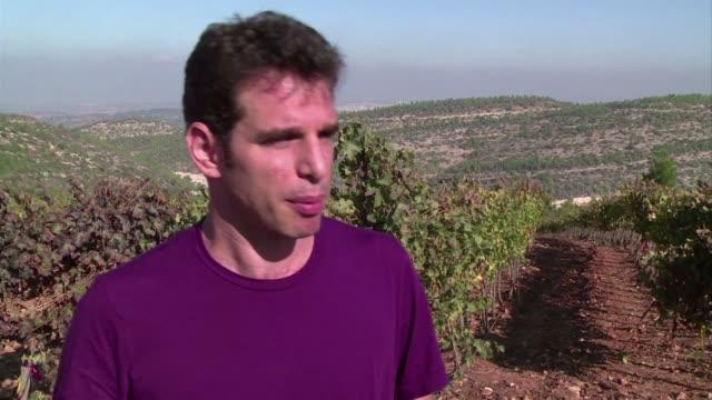 vídeos de stock, filmes e b-roll de pese a producir vino desde los tiempos biblicos israel ha regresado hace solo unos anos al escenario mundial de la vinicultura aunque sus vinos aun... - vino
