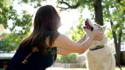 pet have fun near hostess in open air, owner stroking and hug his husky dog at park