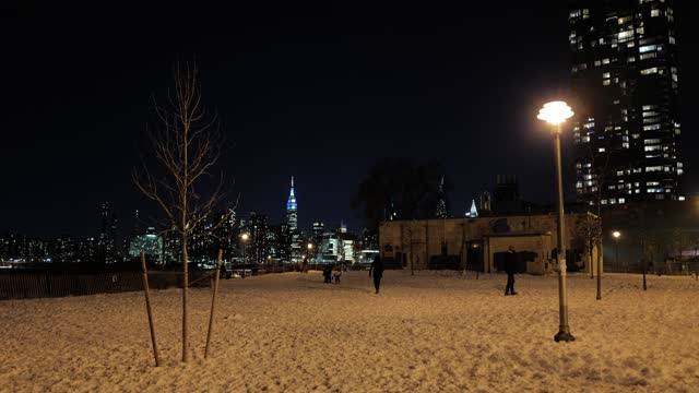 pet owners and their dogs play in wnyc transmitter park, greenpoint, brooklyn on december 17 in new york city. a nor'easter brought heavy snowfall to... - pet owner stock videos & royalty-free footage