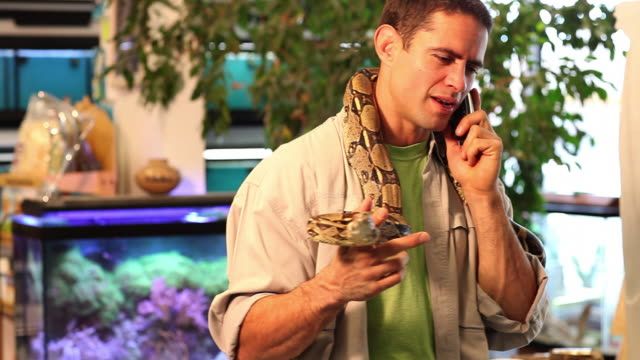 ms pet shop owner talking on phone and holding snake / santa fe, new mexico, united states - petshop stock videos and b-roll footage