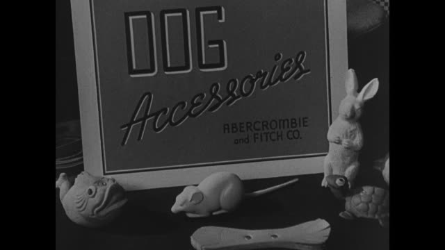 Pet shop w/ salesman showing man large dog collar Sign 'Dog Accessories Abercrombie amp Fitch Co' Woman shopping in Hammacher Schlemmer while holding...