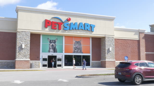 pet store petsmart in small town christiansburg va usa - petshop stock videos and b-roll footage