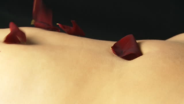 hd dolly: petals falling over sexy belly - lying on back stock videos & royalty-free footage