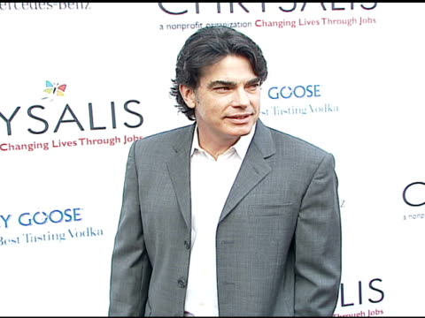 peter gallagher at the chrysalis' fifth annual butterfly ball at private residence in bel air, california on june 10, 2006. - chrysalis butterfly ball video stock e b–roll