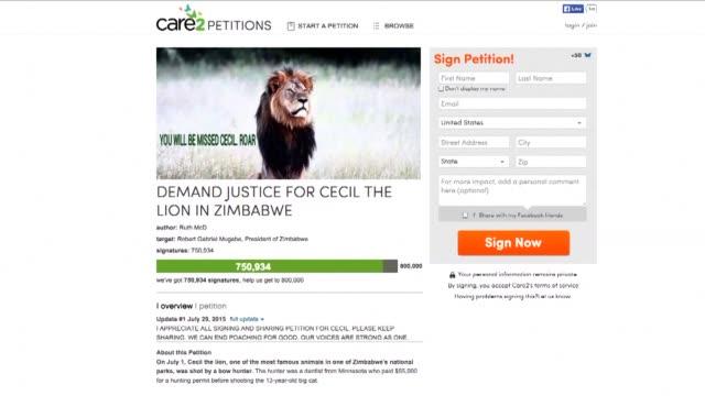 vídeos y material grabado en eventos de stock de a petition seeking justice for cecil the lion had already earned more than 700000 signatures thursday after zimbabwes beloved lion was shot and... - petición
