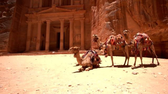 petra -  al khazneh (the treasury) - 4th century bc stock videos and b-roll footage