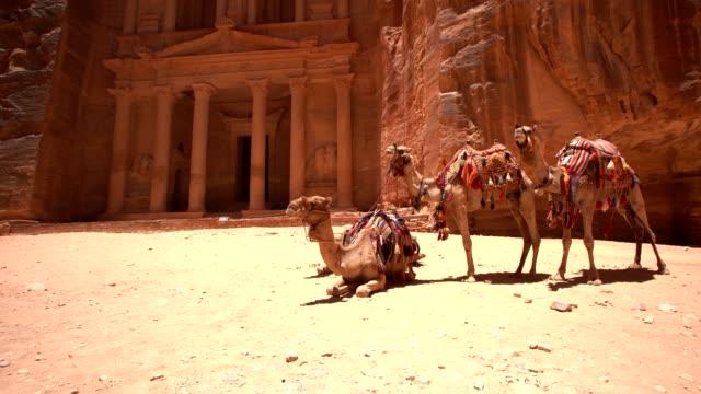 vídeos de stock e filmes b-roll de petra -  al khazneh (the treasury) - petra