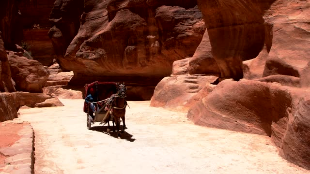 vidéos et rushes de petra - horse cart in the narrow passage (siq) that leads to petra, jordan - roche sédimentaire