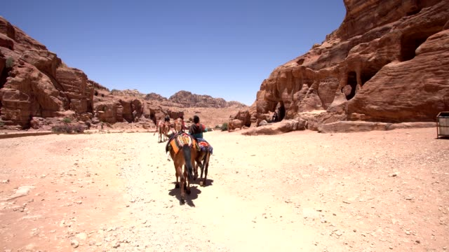 petra - the - 4th century bc stock videos and b-roll footage