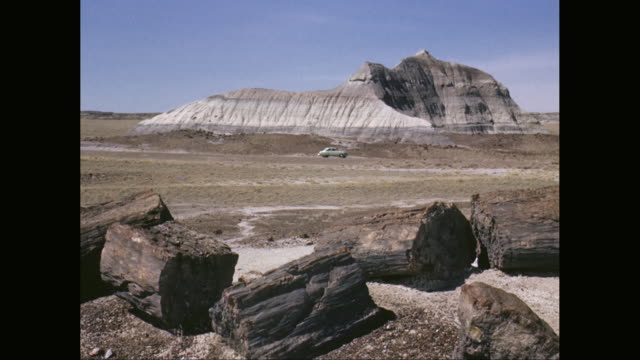 WS petrifed logs, car moving in Petrified Forest National Park / Arizona, United States