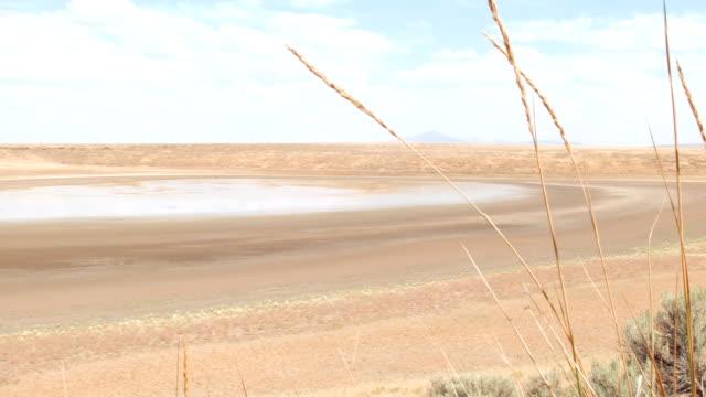 petroglyph lake dry desert watering hole hart mountain national antelope refuge 152 - lake bed stock videos & royalty-free footage