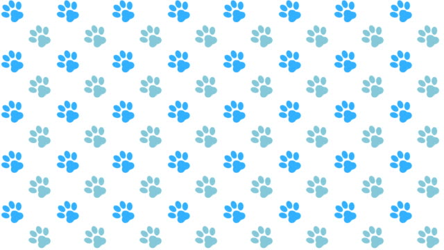 pets pattern background with colored paws - paw print stock videos & royalty-free footage