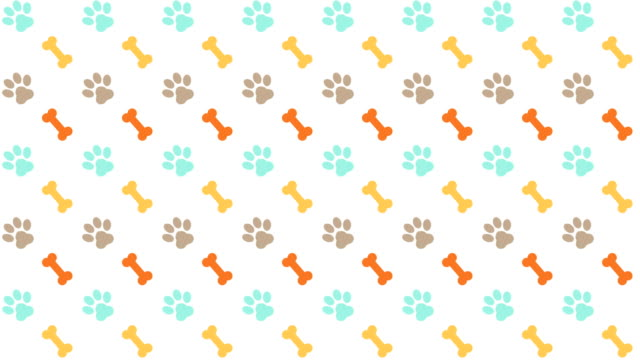 vídeos de stock e filmes b-roll de pets pattern scrolling background with colored paws and bones - garra