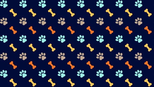 pets pattern scrolling background with colored paws and dog bones - paw print stock videos & royalty-free footage