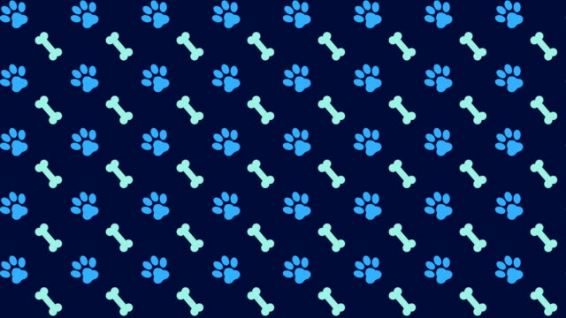 pets pattern scrolling background with colored paws and dog bones - bone stock videos & royalty-free footage