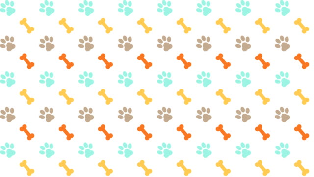 vídeos de stock e filmes b-roll de pets pattern scrolling background with colored paws and dog bones - papel de parede