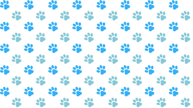 pets pattern scrolling background with colored paws - paw print stock videos & royalty-free footage