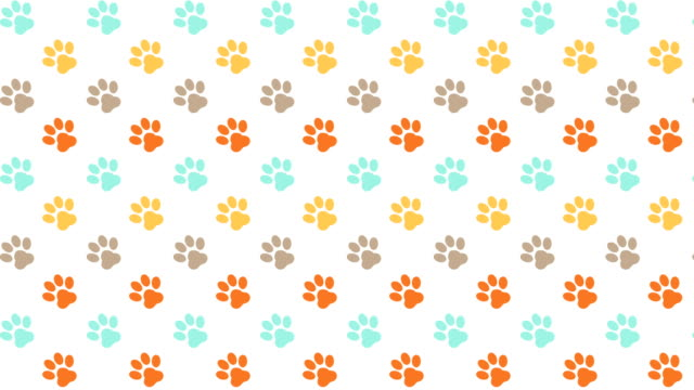 pets pattern scrolling background with colored paws - footprint stock videos & royalty-free footage