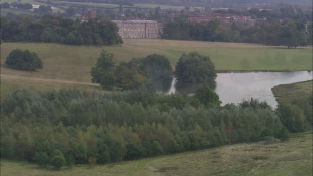 petworth house and park - petworth stock videos and b-roll footage