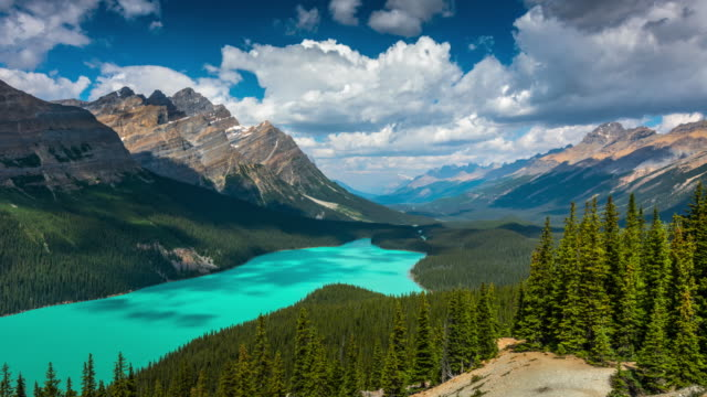 peyto lake, banff national park, alberta, canada - time lapse - banff national park stock videos & royalty-free footage