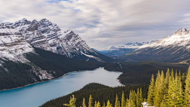 peyto lake - alberta stock videos & royalty-free footage