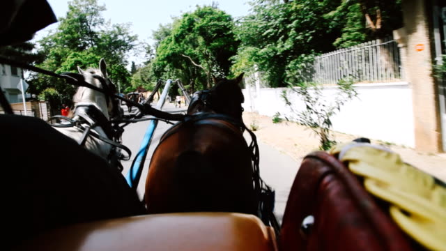 phaeton trip at prince's islands in istanbul - istanbul stock videos & royalty-free footage