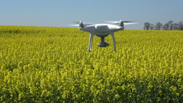 dji phantom 4 quadcopter flies above a field - quadcopter stock videos & royalty-free footage
